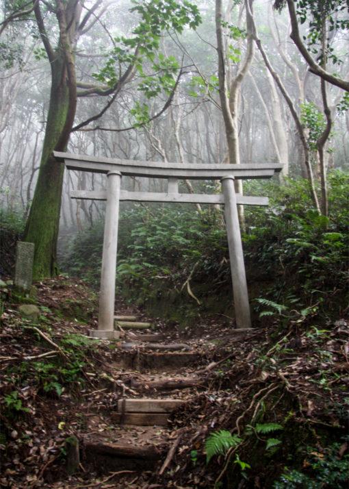 AoiroAirdesign-Hakudo-Rain-image
