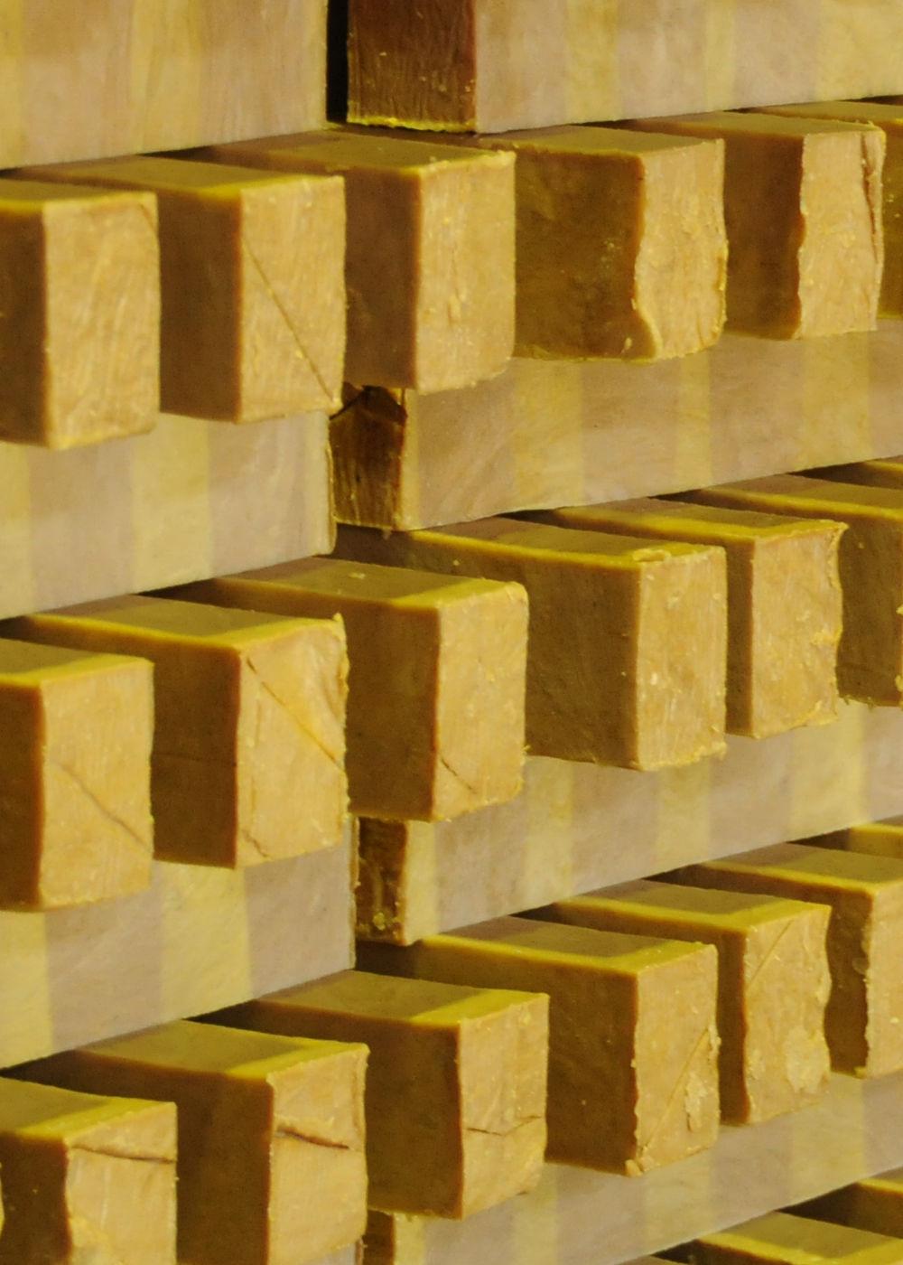 Mutenkasekkenhonpo-image02